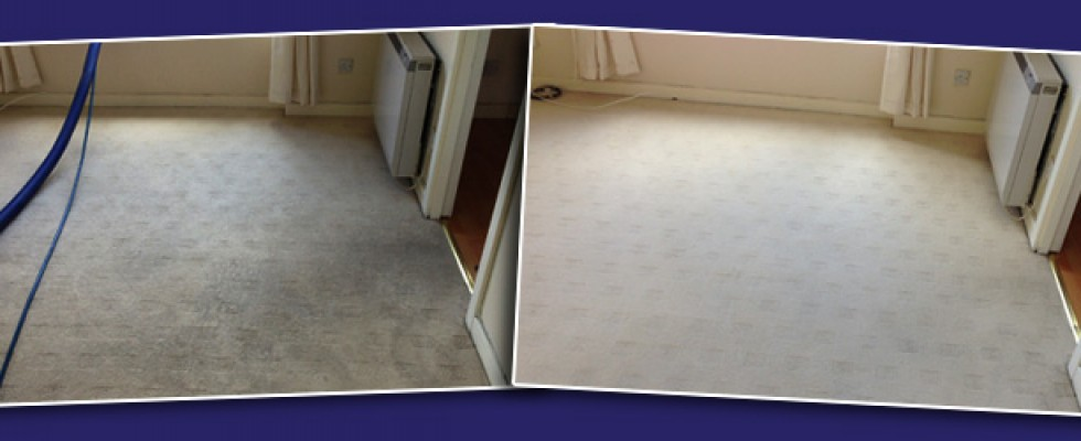 ayrshire carpet cleaning